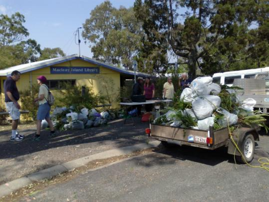 Trees for Weeds at Macleay Island